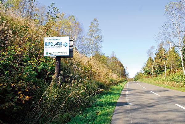 当別町市街から道民の森青山地区方面に向かって道道28号線を進み、道民の森の案内所手前で厚田へと抜ける道道11号線に入るとほどなく、左側に看板があり右に見晴らしの松があります。