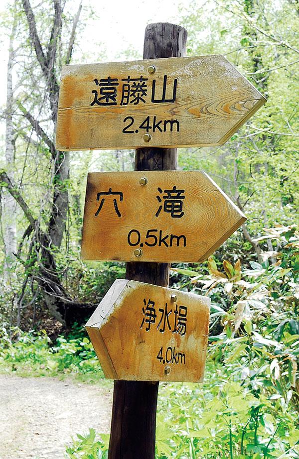 ここも右へ・・・。ここからは道とは呼べない道を進む。