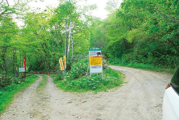 穴滝へは右の林道を進む。山菜採りの人も多いが、虫多い。虫除けグッズと熊避け対策は必要。