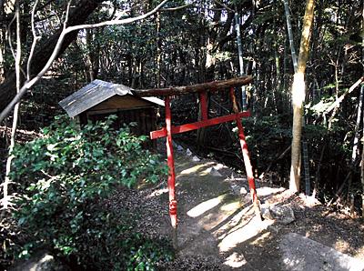 側にある稲荷神社。ここは女性も行けそうです。
