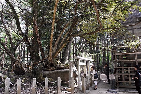 籠神社、本来の元伊勢はここ。 奥の山にまだなにかあるかも…(禁足地です)。